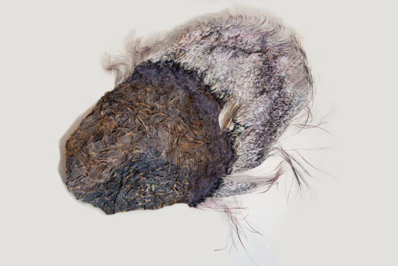 maren-ruben-18-Lila-Flügel